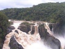Barron Falls. The Barron Falls in Queensland Australia Royalty Free Stock Image