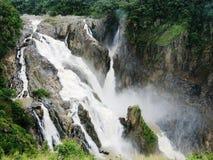 Barron Falls Kuranda Queensland under den våta säsongen arkivbilder