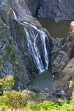 Barron Falls Queensland Australia royaltyfria bilder