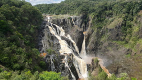 Barron Falls tropiska Australien royaltyfri bild