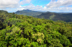 Barron Gorge National Park in Queensland Australia. Aerial landscape view of Barron Gorge National Park a World Heritage in the Wet Tropics of Queensland stock photo