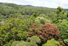 Barron Gorge National Park royalty-vrije stock foto's