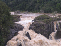 Barron River Waterfall. The Barron Falls in Queensland Australia Royalty Free Stock Images