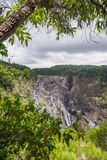 Barron Waterfall i rainforesten royaltyfria foton
