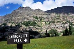 Barronette szczyt Fotografia Royalty Free