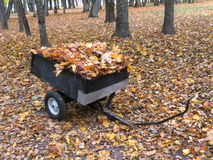 Barrow with leaves Royalty Free Stock Photography
