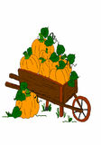 Barrow with pumpkins on white background. Vector illustration, drawing on bamboo intuos Stock Images