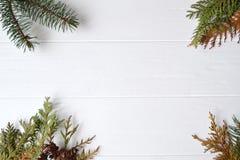 barrträd Naturlig bakgrund Conifefer bakgrund vita röda stjärnor för abstrakt för bakgrundsjul mörk för garnering modell för desi Arkivbilder