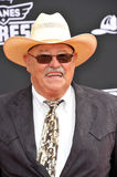Barry Corbin Royalty Free Stock Photography
