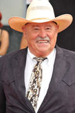Barry Corbin Royalty Free Stock Images