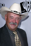 Barry Corbin Obrazy Stock