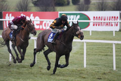 Barry Geraghty e Roberto Goldback Fotografia de Stock Royalty Free