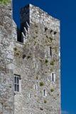 Barryscourt Castle. In summer in Ireland stock image