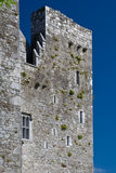 barryscourt zamku Obraz Stock