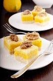bars citronen Royaltyfri Fotografi