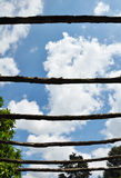 Bars. A cloudy sky closed by bars made ​​of branches with a beautiful backlight Royalty Free Stock Images