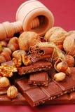 Bars de chocolat avec des noix et des raisins secs Photo libre de droits