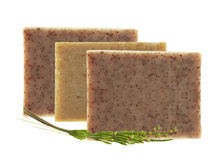 Bars of natural soap with dried herbs isolated on white Stock Image