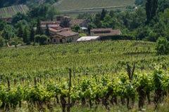 Barsac, drome, Франция стоковое фото rf