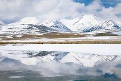 Barskoon谷在吉尔吉斯斯坦,高Tyan掸人 库存图片