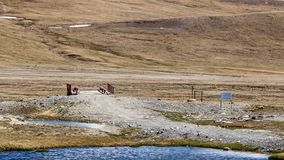 Barskoon Arabel Syrts przy Issyk Kula regionem obraz stock