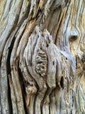 Barst houten textuur Stock Afbeeldingen