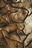 Barsten in de droge grond stock fotografie