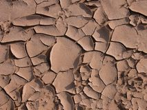 Barsten in de woestijn Royalty-vrije Stock Foto