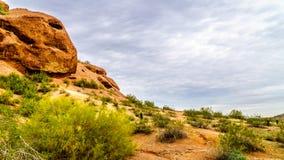 Barsten en Holen door Erosie in rood zandsteenbuttes van Papago-Park dichtbij Phoenix Arizona worden veroorzaakt dat royalty-vrije stock fotografie