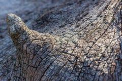 Barsten en patroon van hout Stock Afbeelding