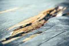 Barsten in het hout royalty-vrije stock afbeelding