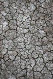 Barstende Woestijn Grond Royalty-vrije Stock Afbeeldingen