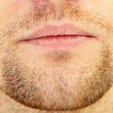 Bart und Lippen Stockfoto
