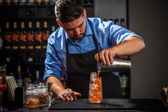 Bartender εργάζεται στοκ φωτογραφία με δικαίωμα ελεύθερης χρήσης