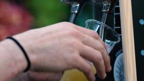 Bartender χύνοντας μπύρα έλξης απόθεμα βίντεο