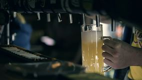 Bartender χύνοντας μπύρα σχεδίων στο μπαρ απόθεμα βίντεο