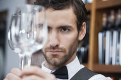 Bartender Examining Wineglass At Winery. Closeup of young bartender examining wineglass at winery Royalty Free Stock Photography
