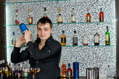 Bartender mixing liquors with the cocktail shaker. Young professional Caucasian bartender mixing liquors with the cocktail shaker at the bar, in a stylish club royalty free stock image