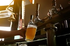 Bartender pouring beer from tap into glass. In bar royalty free stock photos