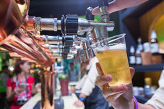 Bartender pouring beer Royalty Free Stock Photo