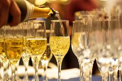 Bartender pouring champagne into glass. Bartender pouring champagne into glasses at party Stock Image