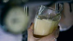 Bartender Pouring Draft Beer in the Pub. Close-up shot stock footage
