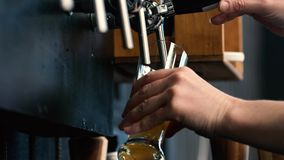 Bartender pouring draught beer. In plastic cups stock footage
