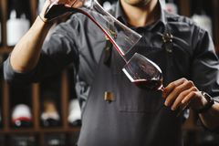 Bartender pours red wine in glass from big transparent vessel. Bartender in work uniform pours red wine in glass from decanter and stands in spacious cellar with Royalty Free Stock Photos