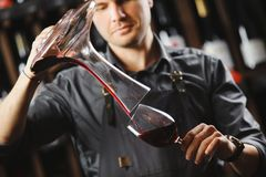 Bartender pours red wine in glass from big transparent vessel. Bartender in work uniform pours red wine in glass from decanter and stands in spacious cellar with Stock Photos