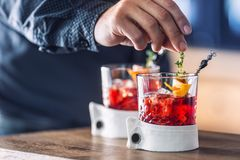 Bartender precisely preparing  cocktail drink with fruit and herb decoration. Bartender only hands preparing alcoholic drink. Bartender precisely preparing Stock Image