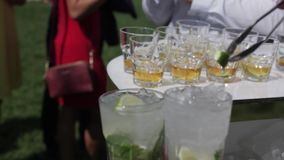 Bartender prepares cocktails to guests with ice, lime and mint. Delivers them to the visitors of the event stock video footage