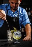 Gin tonic cocktail. Bartender preparing a gin tonic cocktail royalty free stock photos