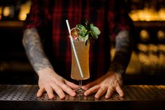 Bartender serving a Sherry Cobbler cocktail decorated with mint. Bartender serving a Sherry Cobbler in the cocktail glass decorated with mint branch and tubule royalty free stock photo