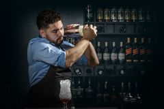 Bartender shakes and mixing Stock Photography